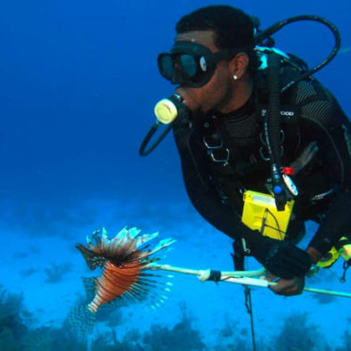 7ad9002e80a863 Roatan Lionfish Spearfishing Dive Adventure